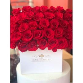 Bouquet 50 roses